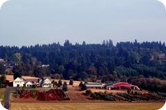 farm-big